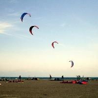 Kiten in Cagliari