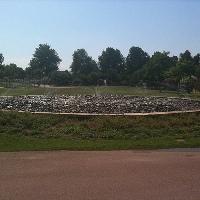 Park günstig Walnuss Olbia