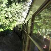 Zug-Grün-arbatax