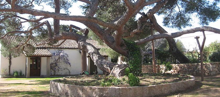 Garibaldi house