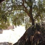 Sardegna luoghi magici