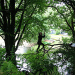 Parco avventura Le Ragnatele